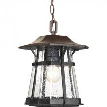Progress P5579-84 - Derby Collection One-Light Hanging Lantern